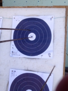 We all hit a bulls eye!